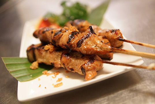 portie-sate